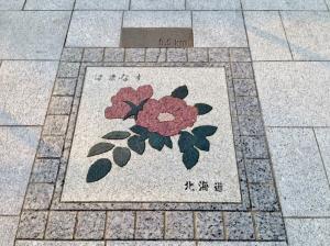 北海道、はまなす。その上部には0.5kmの文字。
