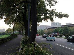 千鳥ヶ淵をすぎてしばらく行くと右手前に国立劇場が。(その奥は最高裁です)
